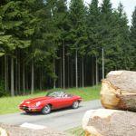Retro Cars WE 2007 (38)