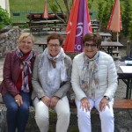Rally Vosges 2017 (33)